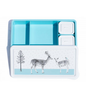 BPA free, compartmentalized  lunch box for kids from Love Mae