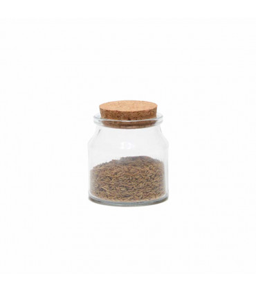 Small Glass Jar with Cork Lid - Set of 6, Mondex