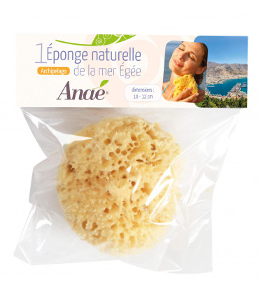 Small natural sponge in compostable packaging