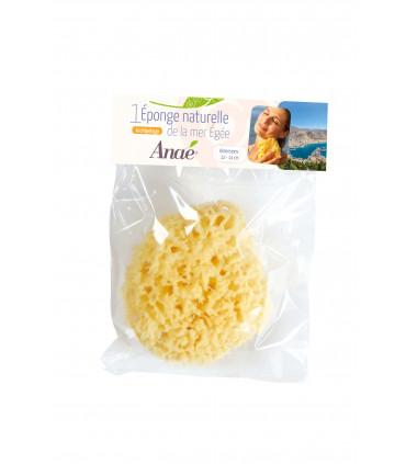 Medium natural sponge in compostable packaging