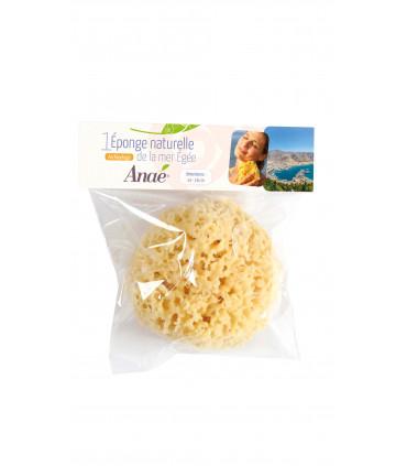 Large natural sponge in compostable packaging