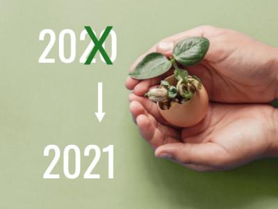 Mes cinq résolutions éco responsables simples à mettre en place pour 2021