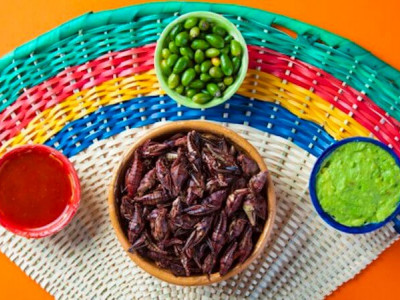 Are edible insects the future of ecological food?