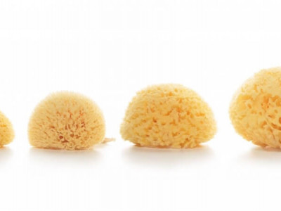 How to clean and maintain a natural sea sponge?
