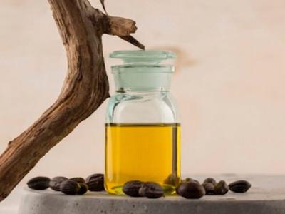L'huile de jojoba, une cire végétale aux multiples bienfaits